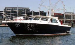 MV Salute boat