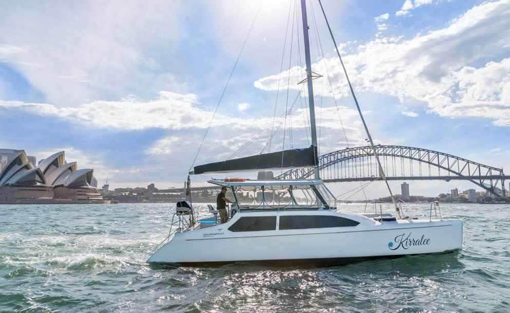 catamaran sydney harbour