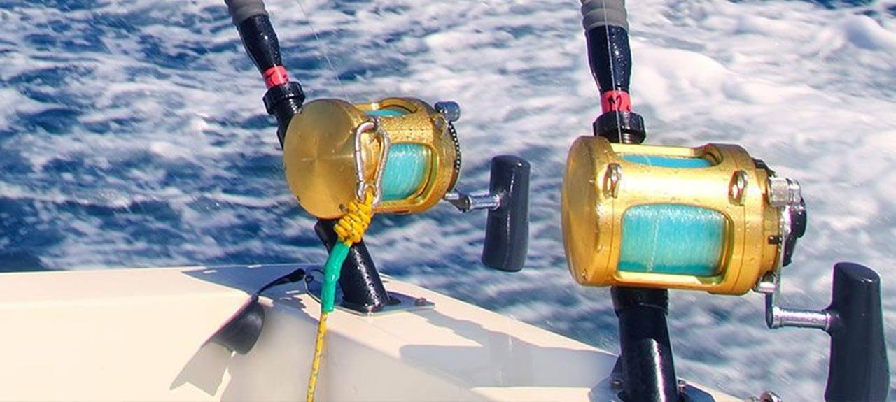 fishing cruises sydney
