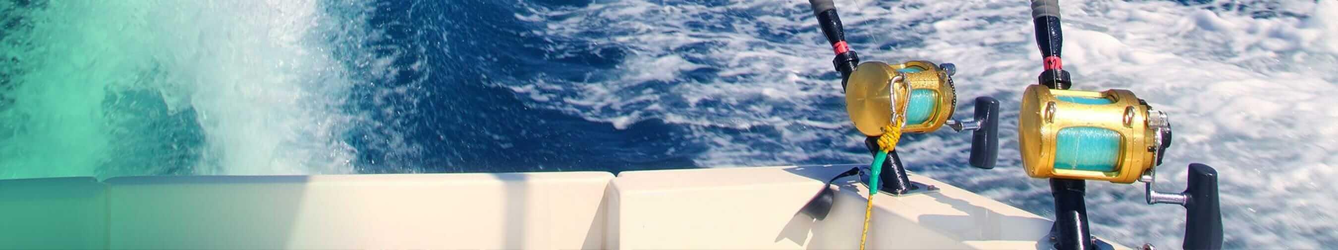 fishing cruises